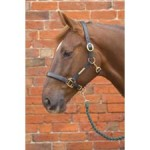 Headcollar Leather