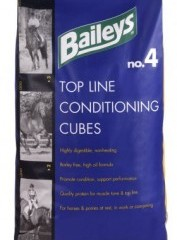 BAILEYS NO 4 CONDITIONING CUBES